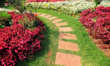 Landscaping in Saint Louis STATE% Landscaping Services in  Saint Louis STATE% Landscapers in  Saint Louis STATE%