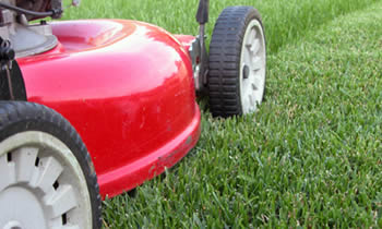 Lawn Care in Saint Louis MO Lawn Care Services in Saint Louis MO Quality Lawn Care in Saint Louis MO